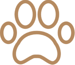 Hundezimmer