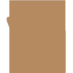 Kino*